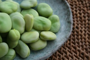 1024px-Broad-beans-after-cooking